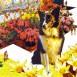 "au ""ifif"" [Free Paper] / 2006  AD : 日高 英輝 - Eiki Hidaka(Gritz Design)"